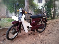 I Want to Buy Bajaj M80 Moped